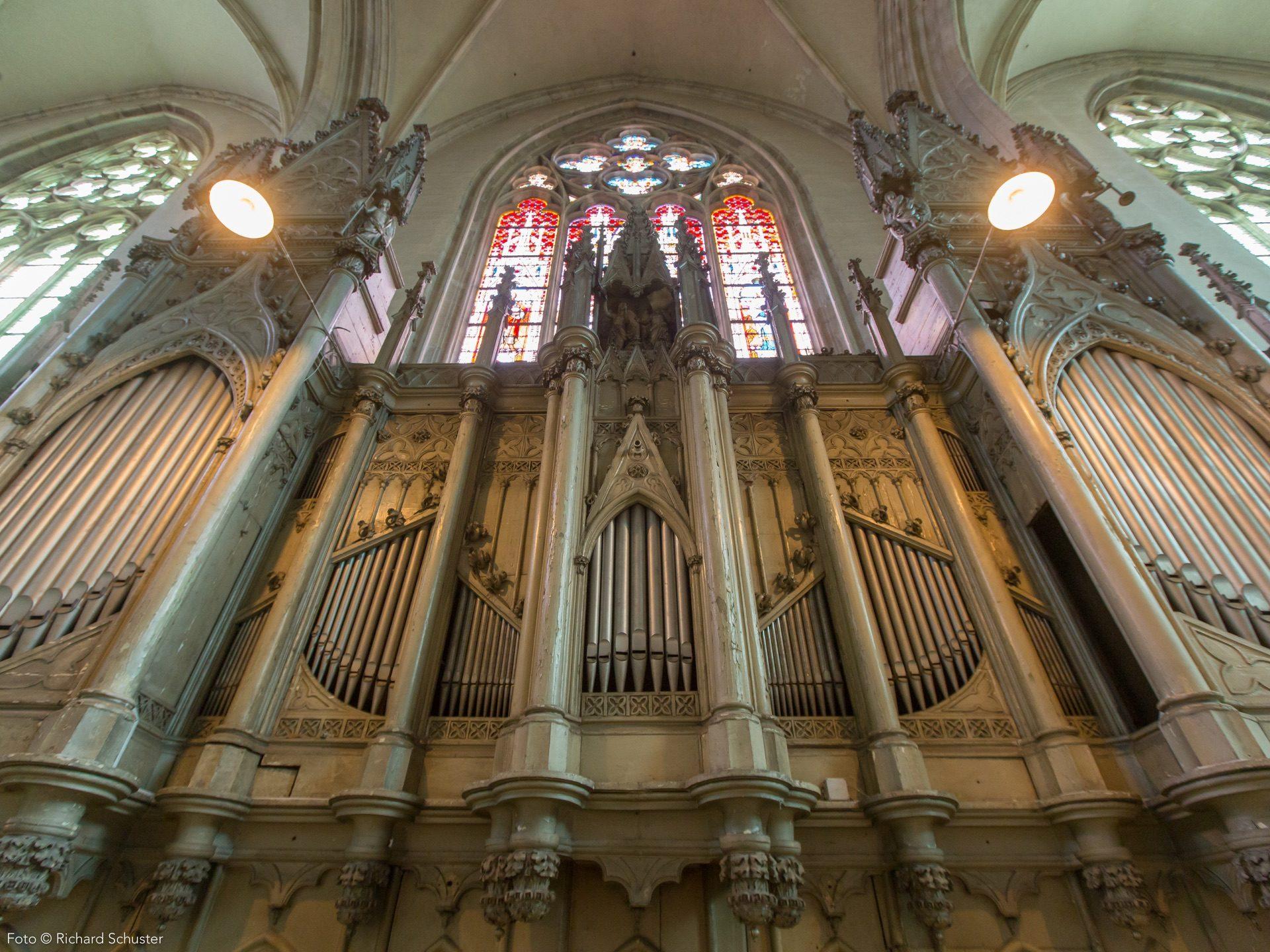 Die Orgel der Minoritenkirche gehört zu den bedeutenden historischen Orgeln Wiens. Sie wurde 1786 gebaut.